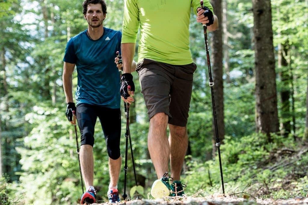 Kije nordic walking regulowane